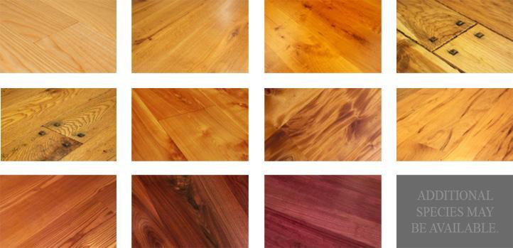 best wood species for my hardwood floor
